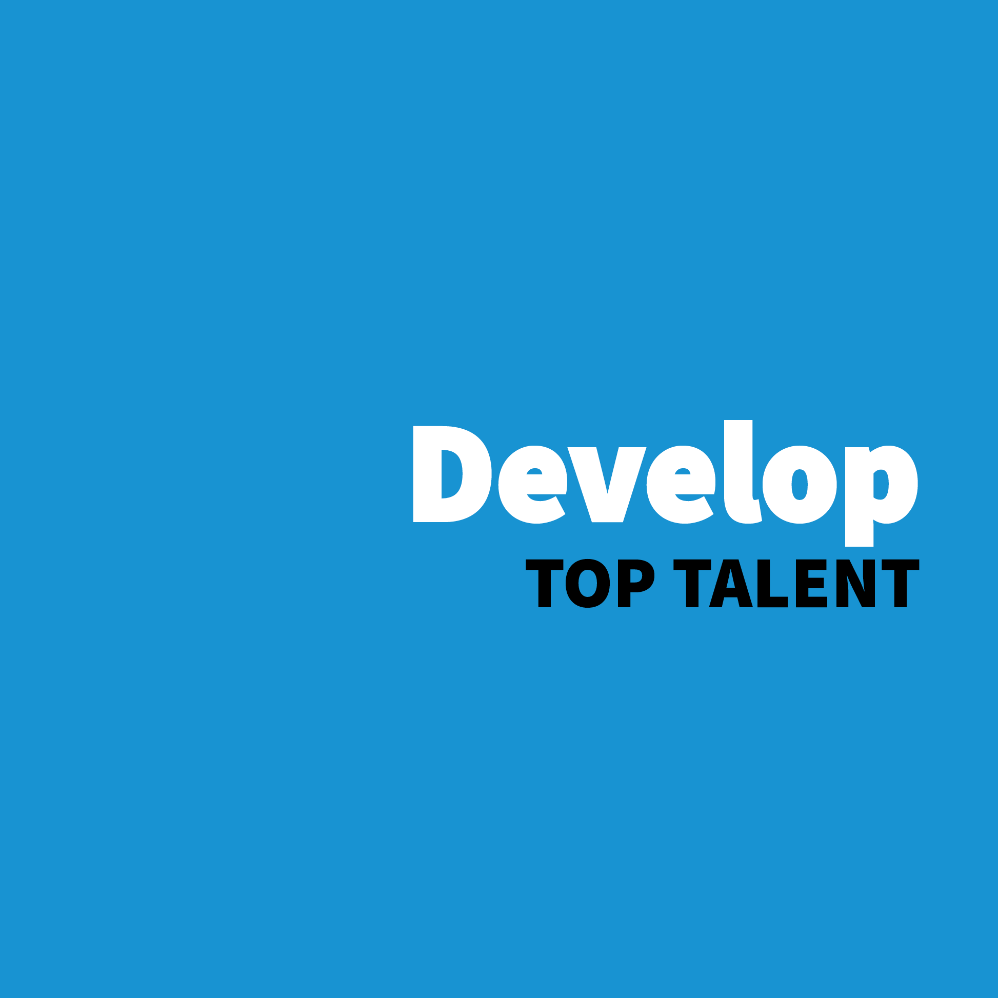 Develop Top Talent