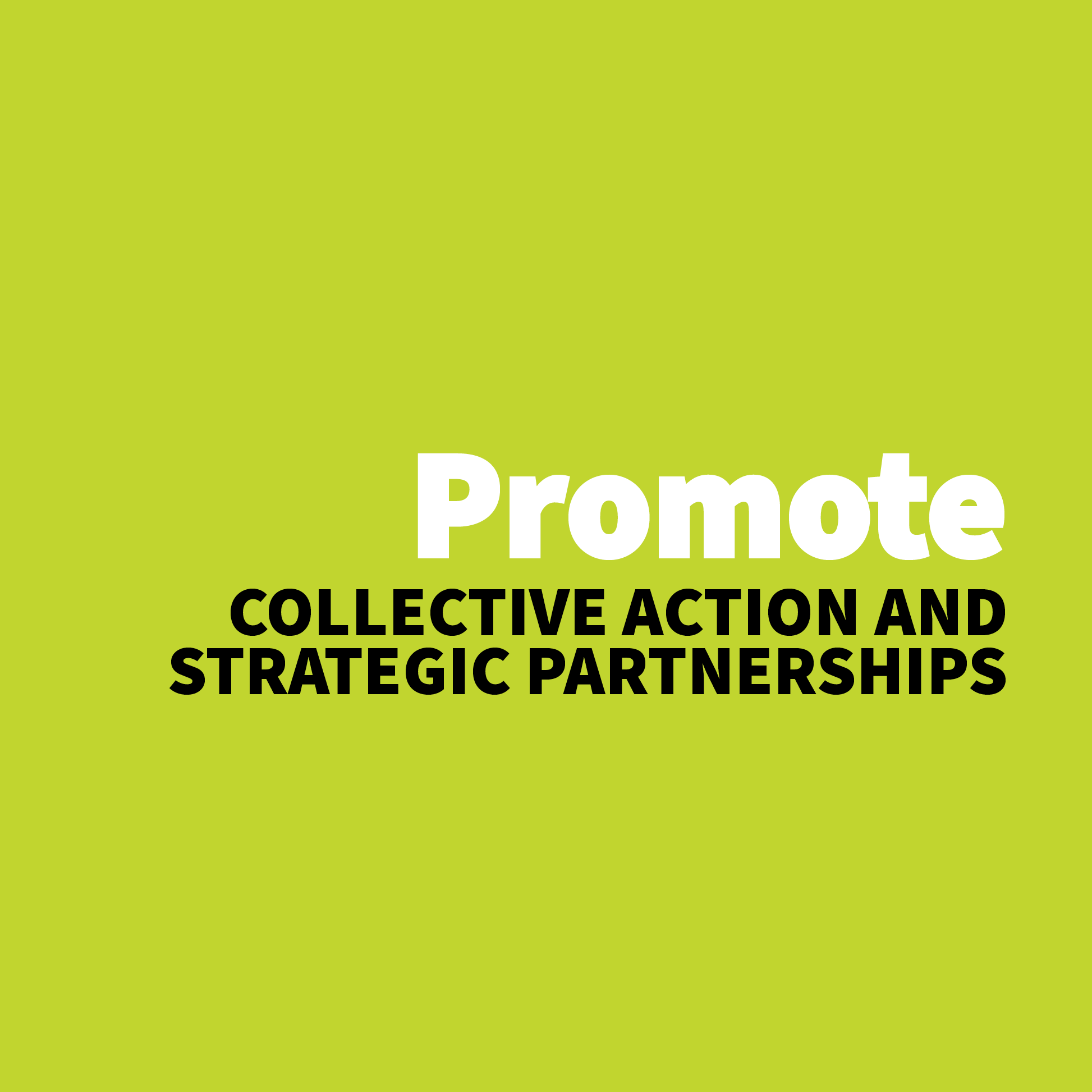 Promote Collective Action and Strategic Partnerships